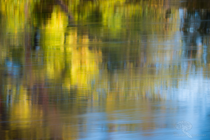 Impressions 1: A fast-flowing river reflects early-autumn foliage on a sunny morning.